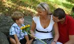 Das Leben als Erwachsener bringt Verpflichtungen mit sich. / Bild: www.BilderBox.com