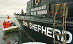 Die Umweltschutzorganisation Sea Shepherd verschreibt sich dem Kampf gegen Walfang, Robbenjagd sowie unverhältnismäßige Fischerei. / Bild: (c) � Reuters Photographer / Reuter