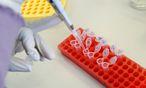 Symbolbild Labor / Bild: Die Presse/Clemens Fabry