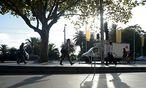 Auch diesem Baum in Melbournes Innenstadt kann man ein persönliches Email schreiben. / Bild: (c) Bloomberg (Carla Gottgens)