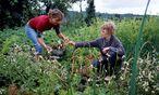 Vegane Ernährung wird spätestens dann hitzig diskutiert, wenn es um Kinder geht. / Bild: Hans-Bernhard Huber / laif / picturedesk.com