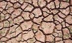 Bei einer Erwärmung von 2,0 Grad wäre Sizilien eine Wüste. / Bild: REUTERS