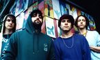 Animal Collective / Bild: Animal Collective