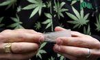 Themenbild Cannabis / Bild: EPA