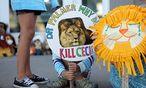 Die Empörung über den Tod des Löwens ist groß. / Bild: REUTERS