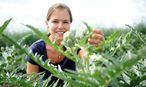 Theuringer hat mit einem Experiment begonnen. Heute kultiviert sie auf fünf Hektar Artischocken. / Bild: Die Presse