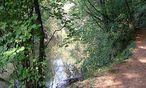 Naturpark Dobersberg / Bild: (c) Naturpark Dobersberg