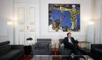 Landeshauptmann Franz Voves / Bild: Die Presse