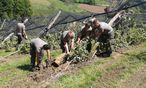 Hilfseinsätze wie jüngst nach Schneeschäden in der Steiermark wollen koordiniert werden. Die benötigten Führungs-Skills sind auch im Zivilleben hilfreich. / Bild: (c) APA/BUNDESHEER/CHRISTIAN FIEDLER