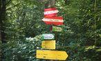 Olympia motiviert. Vielleicht zu einer Mountainbike-Fahrt im Wienerwald? / Bild: (C) Kommenda