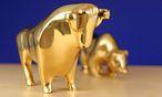 Die Bullen hatten zuletzt Überhand / Bild: www.BilderBox.com