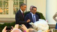 Obama begnadigt Truthähne /