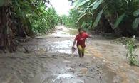 Bild: (c) Reuters (Reuters, JAN 29 CH 4 PERU, JAN 29)