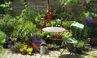 Kleine Idylle? Auf (Sicht-)Schutz, Sonnenstand und Wasserzugang achten. / Bild: (c) R. Tiburzy/Fotolia