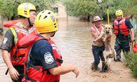 Bild: APA/EPA/ROY DABNER