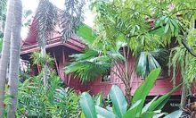 Tropischer Bewuchs verschlingt das Haus des Verschollenen.