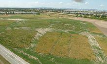 2014 sollen am Flugfeld Aspern die ersten Wohnbauten stehen.