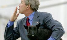 Ehemaliger USFirst Barney Bush