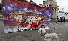 Proteste gegen Hundetoetungen in der Ukraine