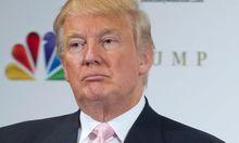 Donald Trump treibt Orang-Utan-Streit voran