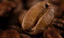 Forscher entdeckten Wirkungsort Koffein