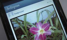 Instagram will keine FotoIntegration