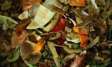 Mehr als 190.000 Tonnen Lebensmitteln - exklusive Verschnitt und Getränke - fallen in der österreichischen Gastronomie pro Jahr an.