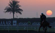 UAE HORSE RACING DUBAI WORLD CUP 2013