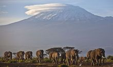 Symbolbild: Tansania