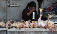 Markt in Hefei, China