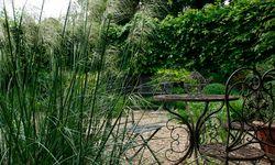 Blendend grün. So sieht der Privatgarten von Penny Snell aus. / Bild: (c) Anita Arneitz