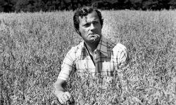 Ein König im Kornfeld. Carl Gustav im Juli 1975 – da war er noch keine zwei Jahre im Amt. / Bild: Imago