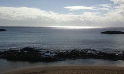 Ansichtskartenmotiv. Verlässt Lanzarote seltener, als man denkt. / Bild: (c) Beigestellt