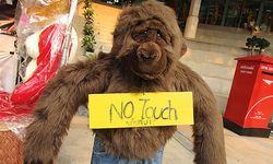 Nicht berühren. Urmenschentum absolut verboten. / Bild: (c) Beigestellt