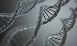 Bild: (c) imago/Science Photo Library (imago stock&people)