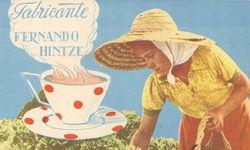 Atlantik. Tee folgte auf Orangen. / Bild: (c) Beigestellt