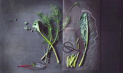 Ganz. Schalen, Strünke, Stiele, Blüten: Alles lässt sich verwerten.  / Bild: (c) Beigestellt