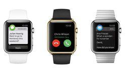 Mit der Apple Watch schnallt man sich so eine Art Minimundus des iPhone an das Handgelenk. Die Apple Watch ist ein iPhone-Wrist-Interface, ein  Bindeglied mit Miniaturbildschirm zwischen dem iPhone und dem Handgelenk. / Bild: (c) Beigestellt
