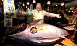 """212 Kilogramm Thunfisch für 600.000 Euro ist schon ein """"bisschen teuer""""  / Bild: Reuters"""