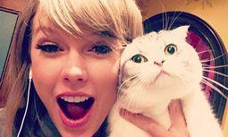 Taylor Swift / Bild: Instagram