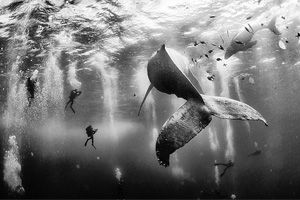 Anuar Patjane Floriuk/ 2015 National Geographic Traveler Photo Contest