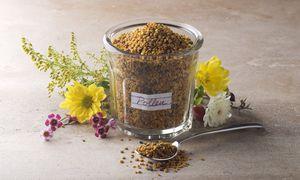 Pollen als Hauptnahrungsmittel: Antonio Couto wagte den Selbstversuch. / Bild: Ryman / dpa Picture Alliance / picturedesk.com
