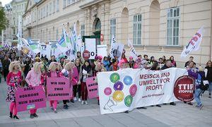 Demonstranten in Wien / Bild: (c) APA (GEORG HOCHMUTH)