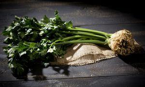 Sellerie-Allergiker müssen beim Essen gut aufpassen: Die Sellerie ist in vielen Suppen, Gewürzmischungen etc. vertreten.  / Bild: Westend61 / picturedesk.com