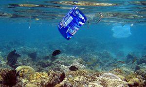 Plastik im Meer ist allgegenwärtig. / Bild: EPA
