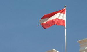 Österreichische Fahne / Bild: (c) Bilderbox
