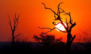 Sonnenuntergang / Bild: (c) EPA (Jon Hrusa)