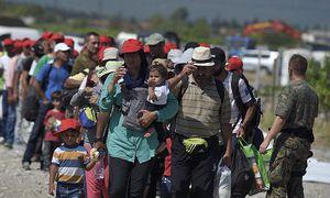 Mehr als vier Millionen Syrer flüchteten in Nachbarländer. / Bild: APA/EPA/VASSIL DONEV