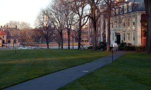 Safe Spaces, Trigger Warnings: In den USA ist eine Debatte über die Verweichlichung von Studenten ausgebrochen. / Bild: (c) BLOOMBERG NEWS
