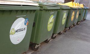 Archivbild: Eine Müllinsel in Wien / Bild: (c) Michaela Bruckberger / Die Presse